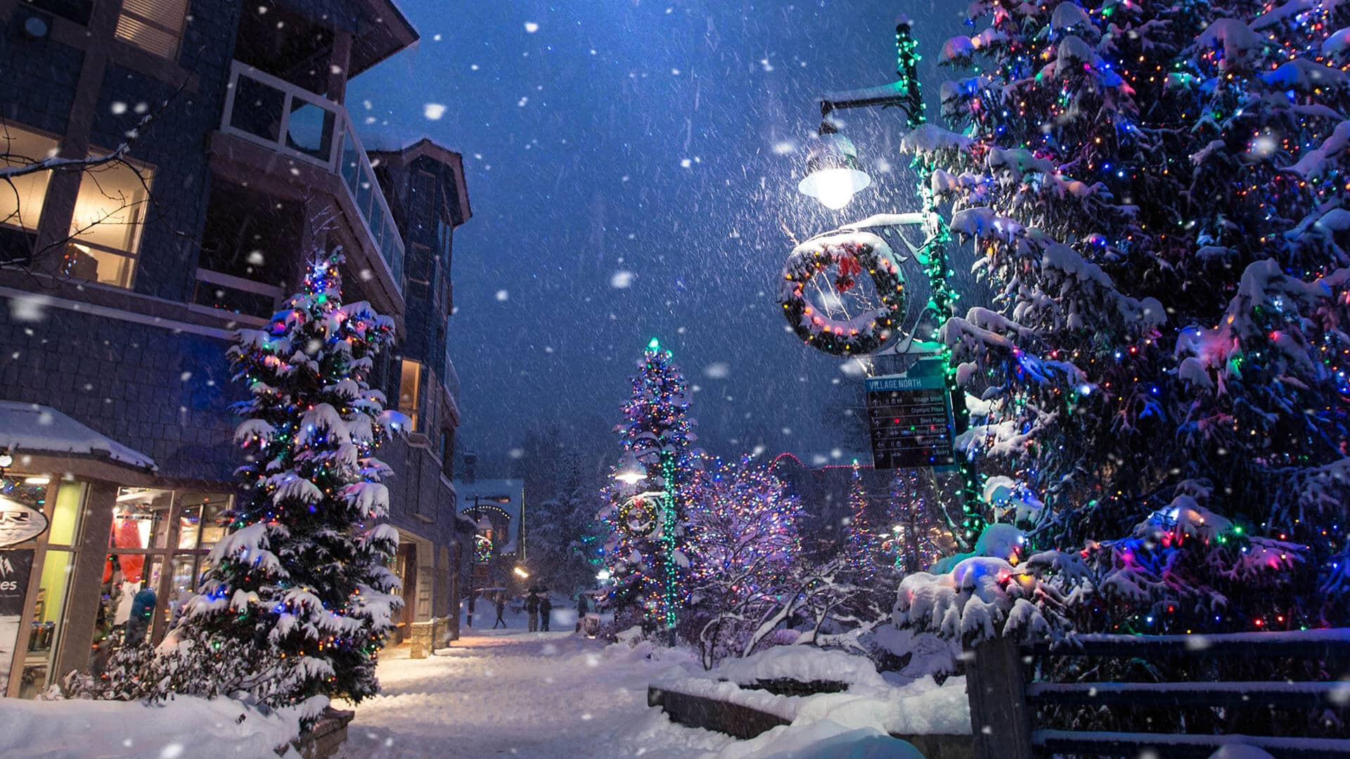 Landscape Lighting for Christmas and Holiday Season in Vancouver BC